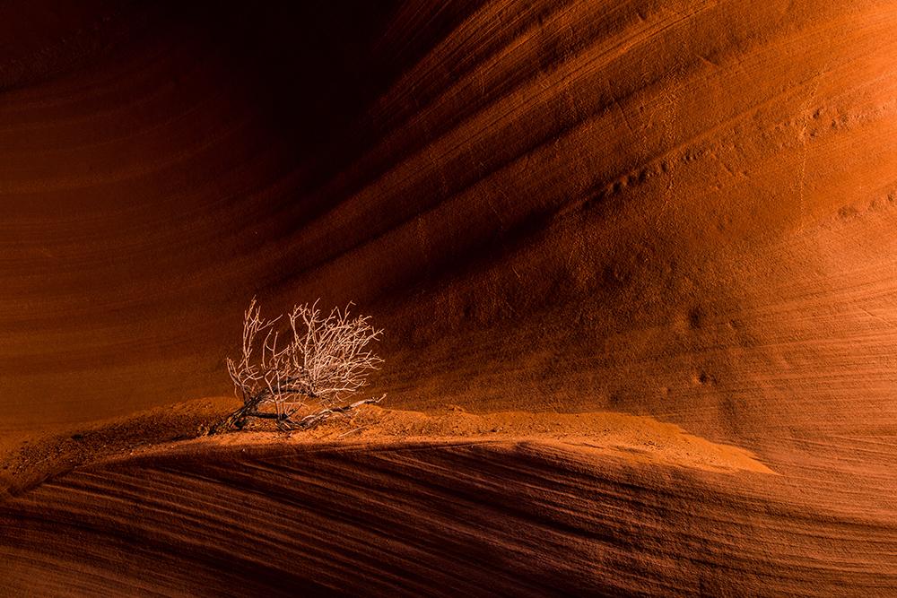 Secret Canyon 071016j copy.jpg