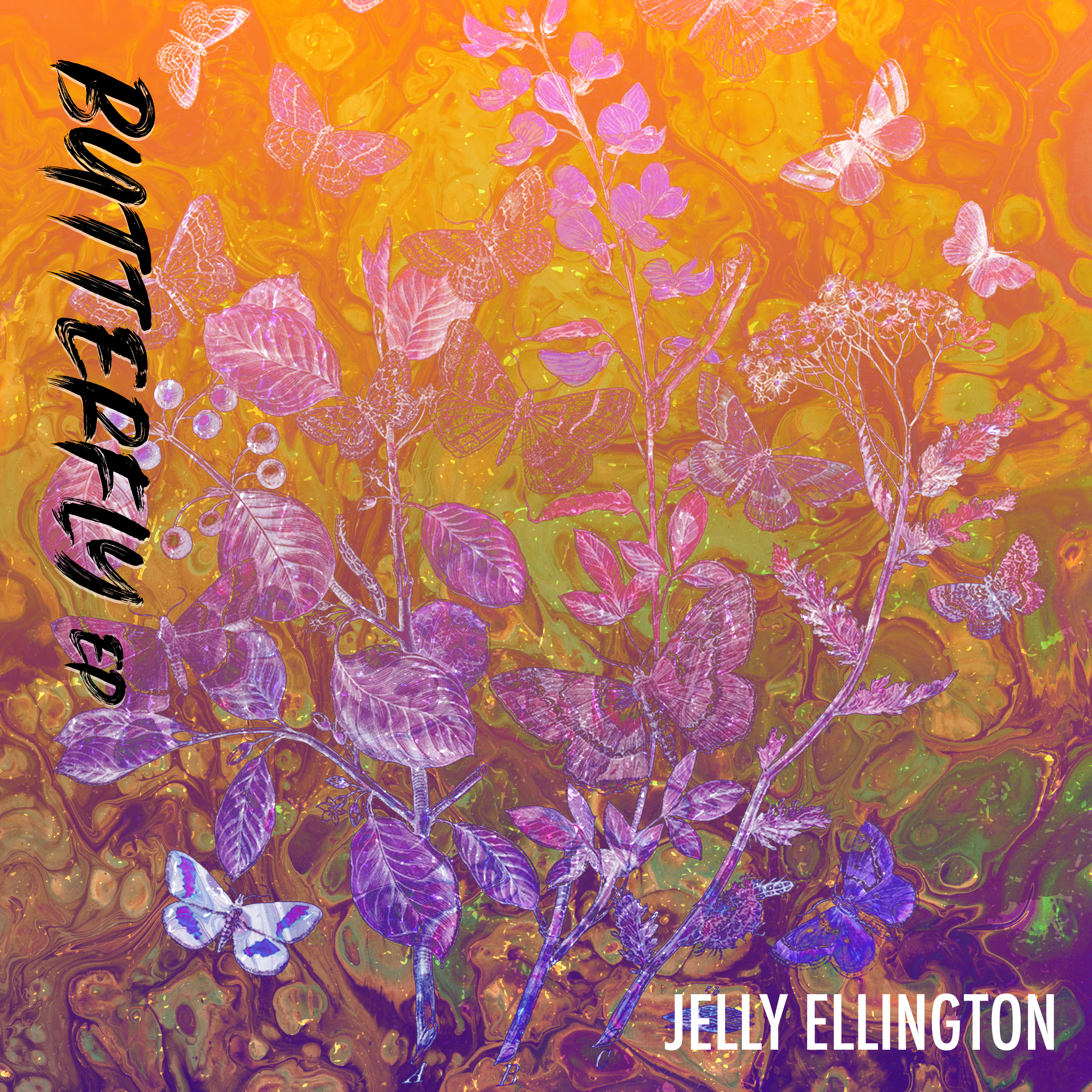 """- CO PRODUCED: Dane Orr (Anna Wise, Sonnymoon) and Jelly EllingtonMIXED: Dane OrrMASTERED: Nick Landis at Tera Nova Digital Audio Inc.EP ART: Lauren Santorio at Renzo DesignsLISTEN HEREJelly Ellington redefines himself with his sophomore EP Butterfly. Produced by Dane Orr (Anna Wise, Sonnymoon), the four track EP takes listeners on a sonic adventure, blending gritty guitar riffs and catchy melodies with electronic beats and jazzy bass lines. The EP is a bold step in a new musical direction from Jelly's signature blues rock style, as his classical and jazz influences shine more into the limelight in track's like """"Best of Me"""" and """"Fade Away."""" The wall of guitars and grungy chorus shout out loud his mission in this EP: growth is found in """"never fearing the unknown.""""""""Jelly Ellington continues to impress and evolve with his new sounds while staying true to his rock roots."""" — 512 Radio host Patrick Davis, 105.3 The Bat Austin""""You won't be disappointed.""""— Keep Walking MusicTRACKS:1. Butterfly2. Fade Away3. Best of Me4. ChristabelCURRENTLY RELEASED:"""