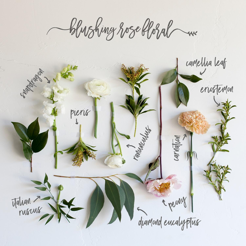 Bouquet Breakdown by Blushing Rose Floral | Utah Wedding Florist