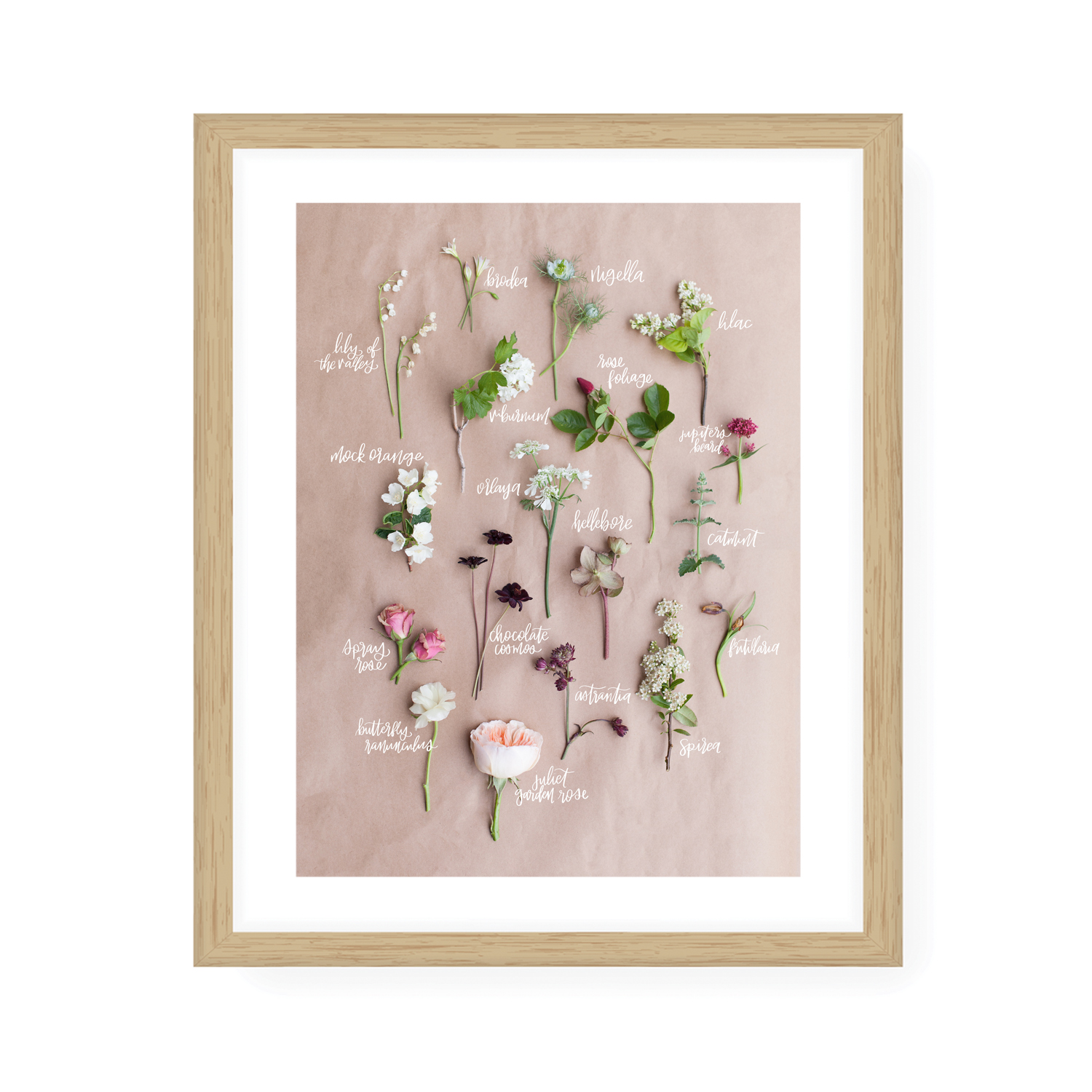 Bouquet Breakdown Prints -
