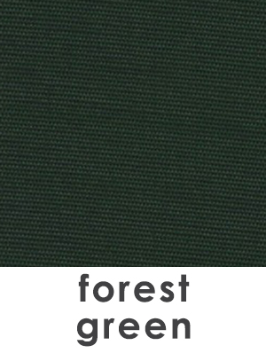 BWM_Swatch 1x1 and text_forest green.jpg