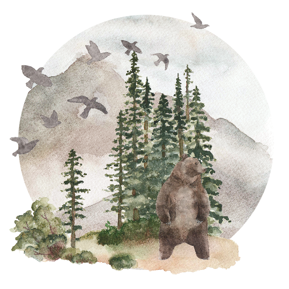 For-The-Wild-Research_Tongass.png