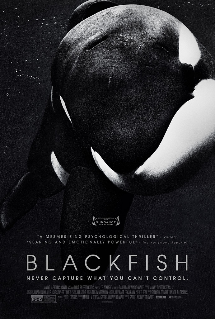 "Documentaries like ""Blackfish"" (2013) often only share one side of the story. // seaworldofhurt.com"