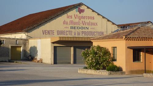 """Coopèrativ beliggende i byen Bedoin ved foden af Mont Ventoux – også kendt som """"Det skaldede bjerg"""" Coopèrativet producerer hvert år omkring 3,5 millioner flasker vin af druerne fra ca. 1000 ha. marker.Coopèrativ beliggende i byen Bedoin ved foden af Mont Ventoux – også kendt som """"Det skaldede bjerg"""" Coopèrativet producerer hvert år omkring 3,5 millioner flasker vin af druerne fra ca. 1000 ha. marker."""