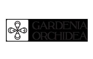 Gardenia Orhidea.png