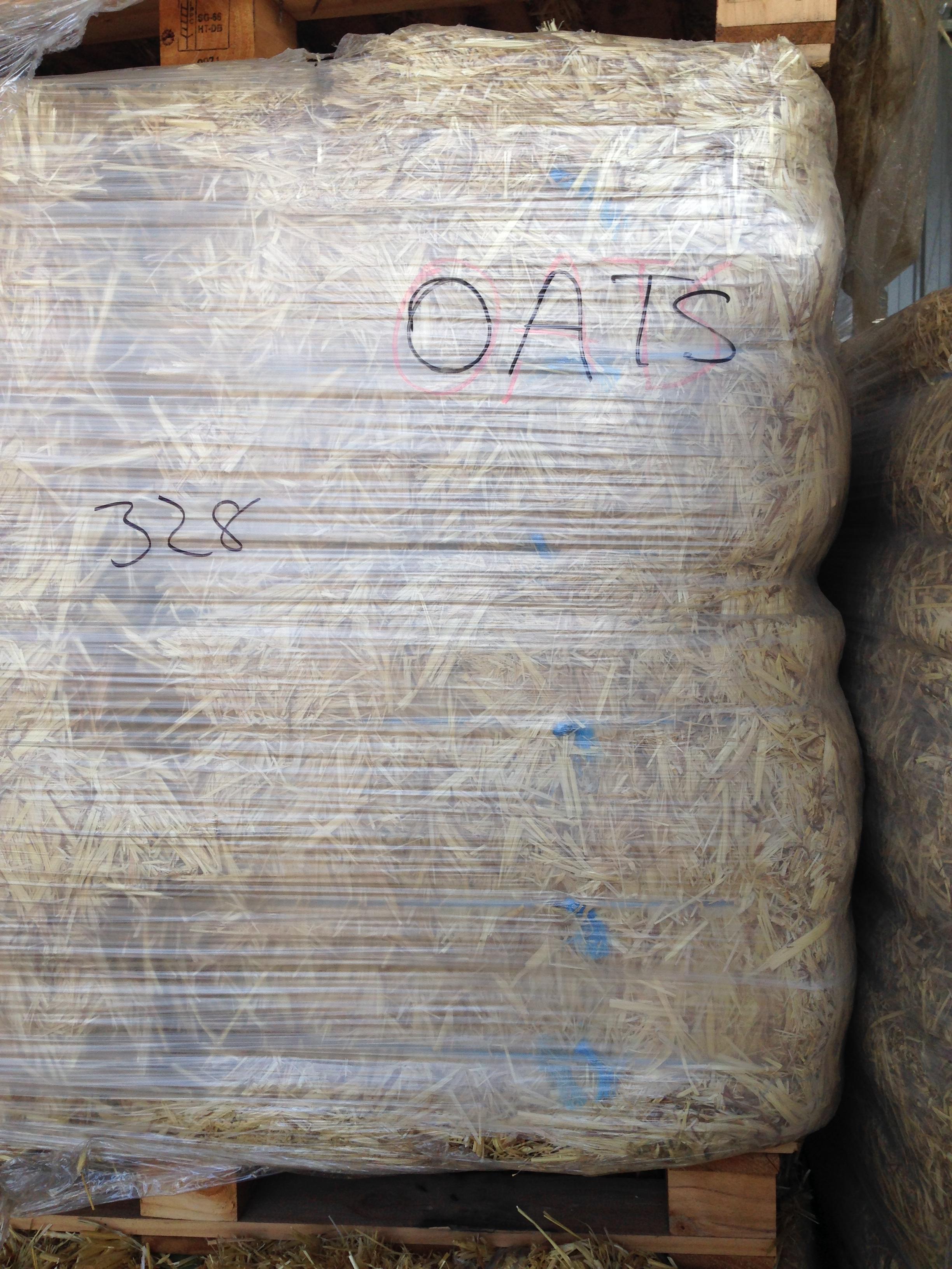 oat hay (4).JPG
