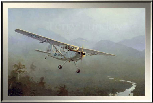 Watermark O-1 Bird Dog 530.jpg