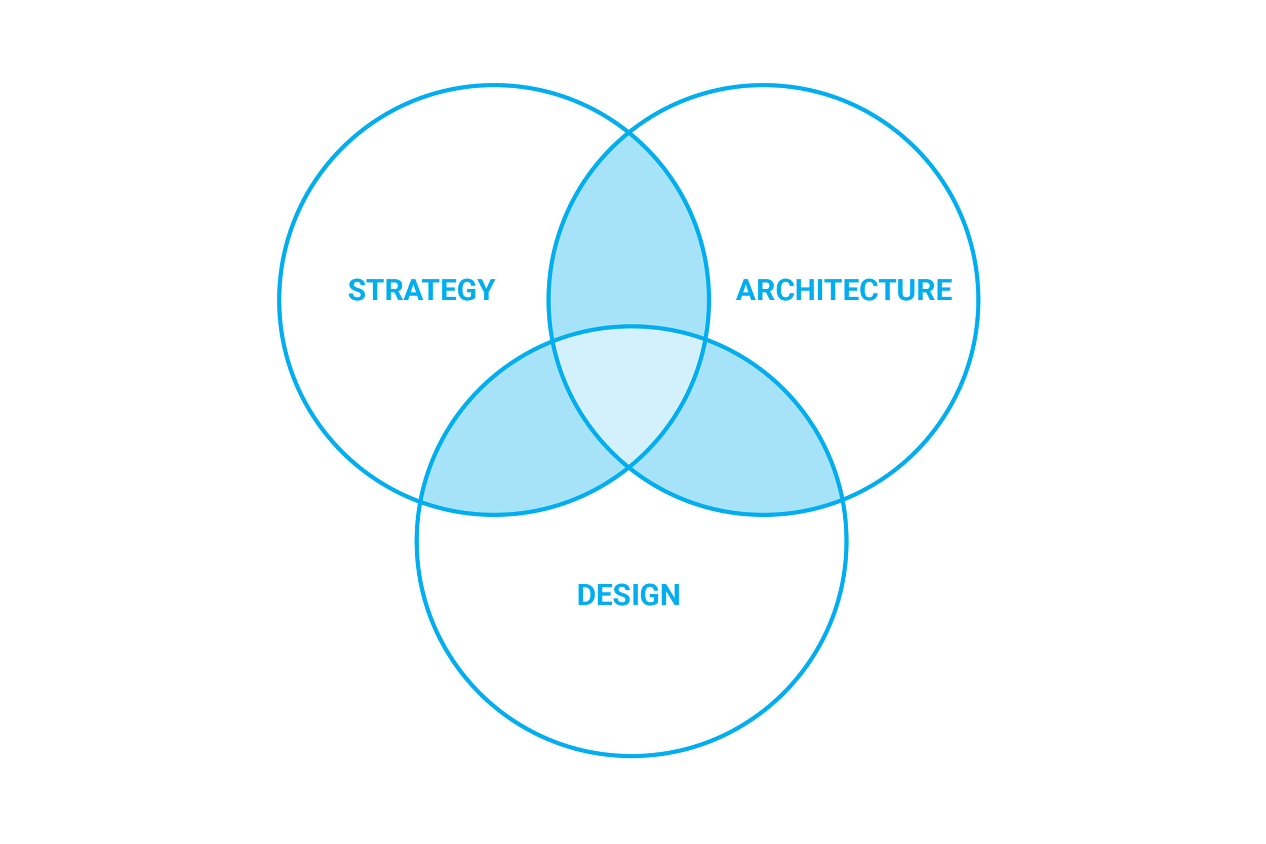 Strawn_and_Sierralta_about-design-process2.jpg