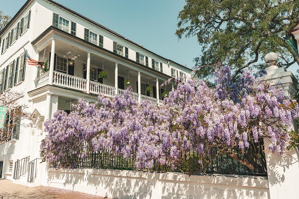 Charleston North Carolina.jpg