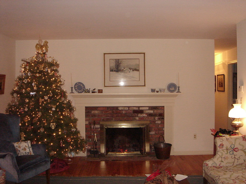 Our living room tree!