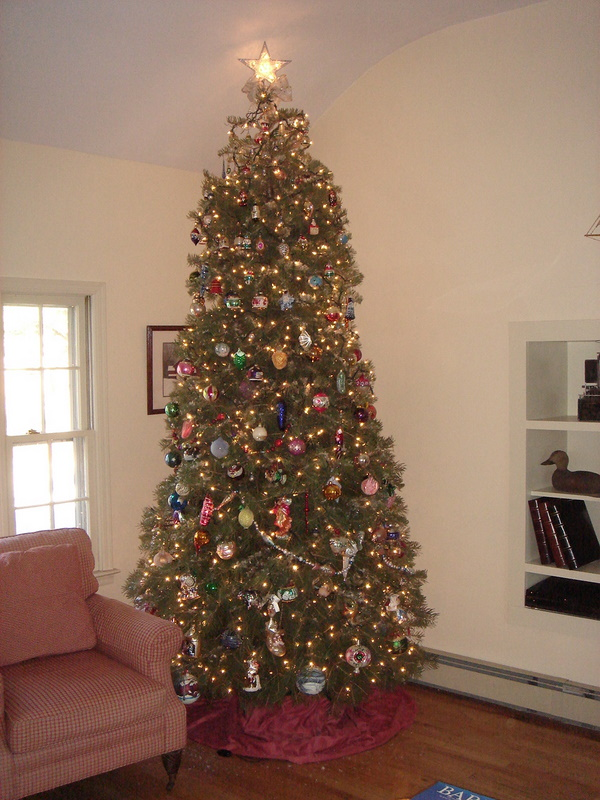 Our family room tree!