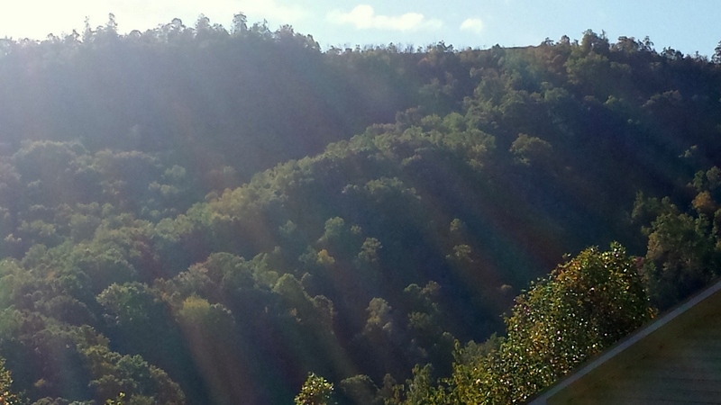 The ridge behind our house in the morning sunlight