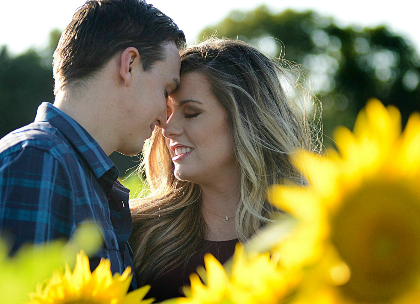 Fall Maternity shoot in a sunflower field in Kansas - Grinter Farms