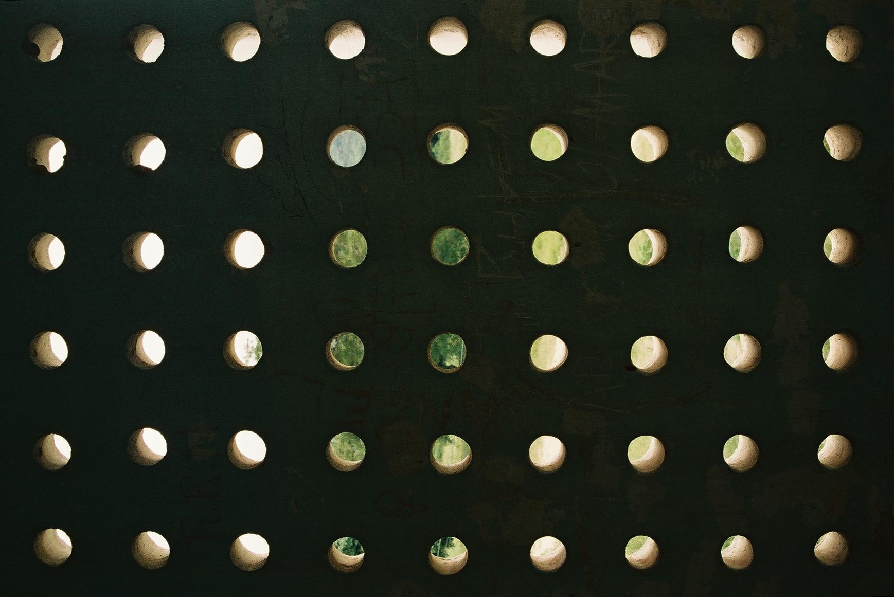 Light box, Dos Rios.JPG
