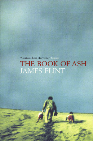 The Book of Ash original UK trade paperback cover.png