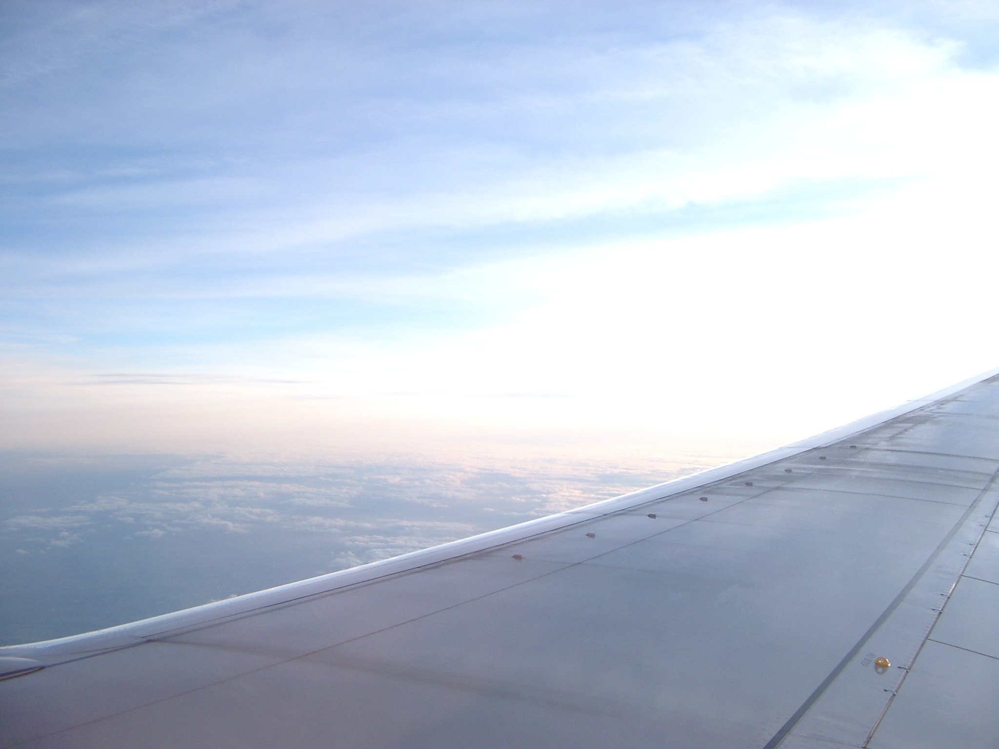 Wing, Stratosphere.jpg