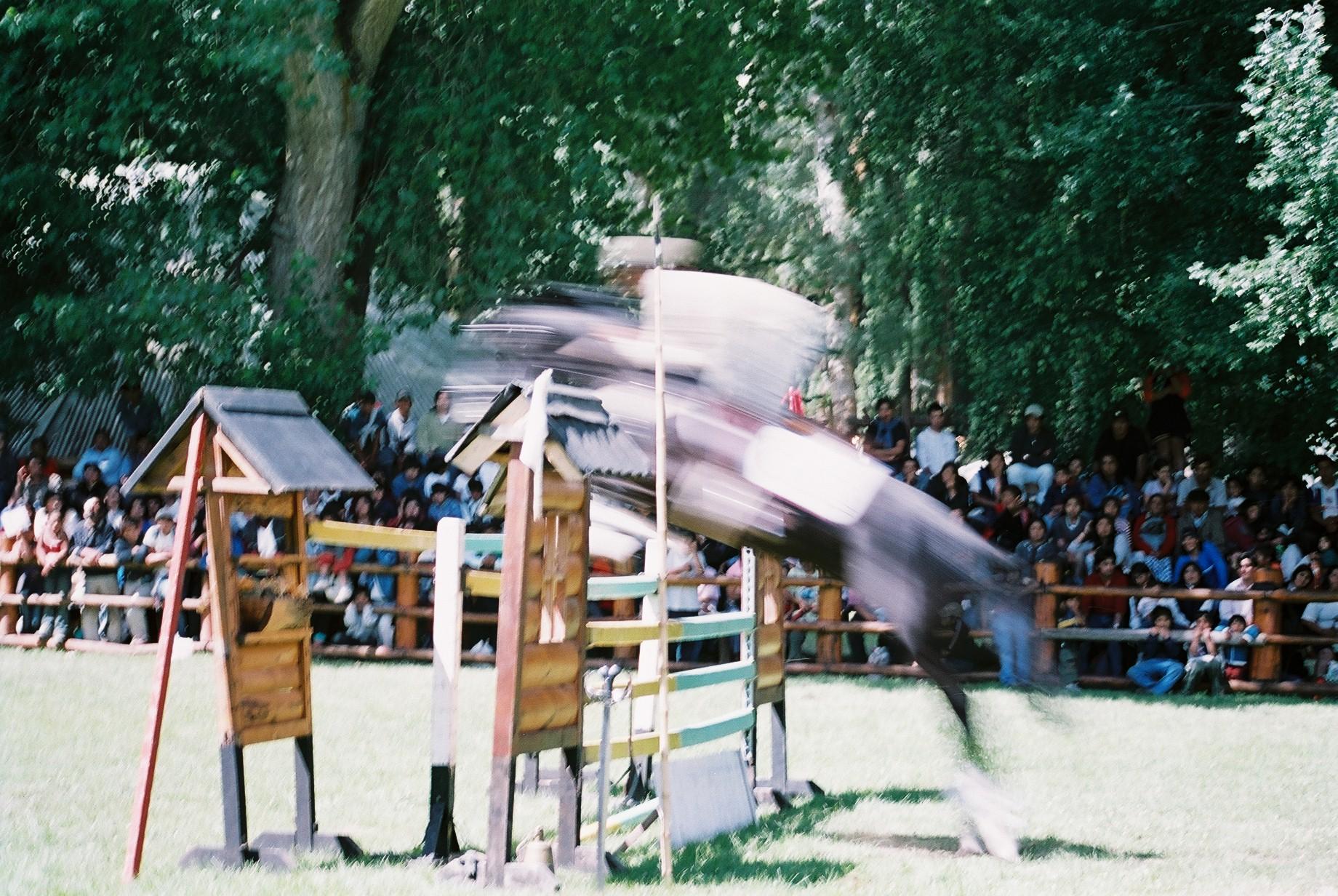 Jumping Horse, San Martin.JPG