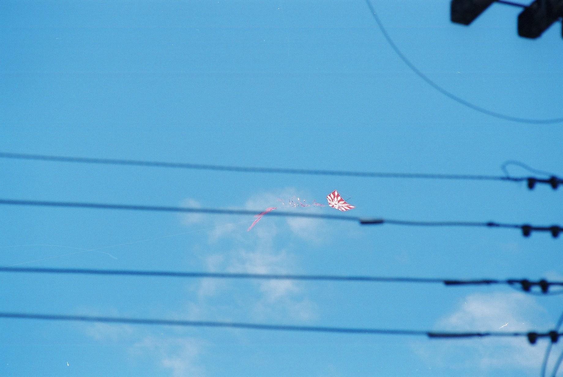 Kite & Wires, Parati.JPG