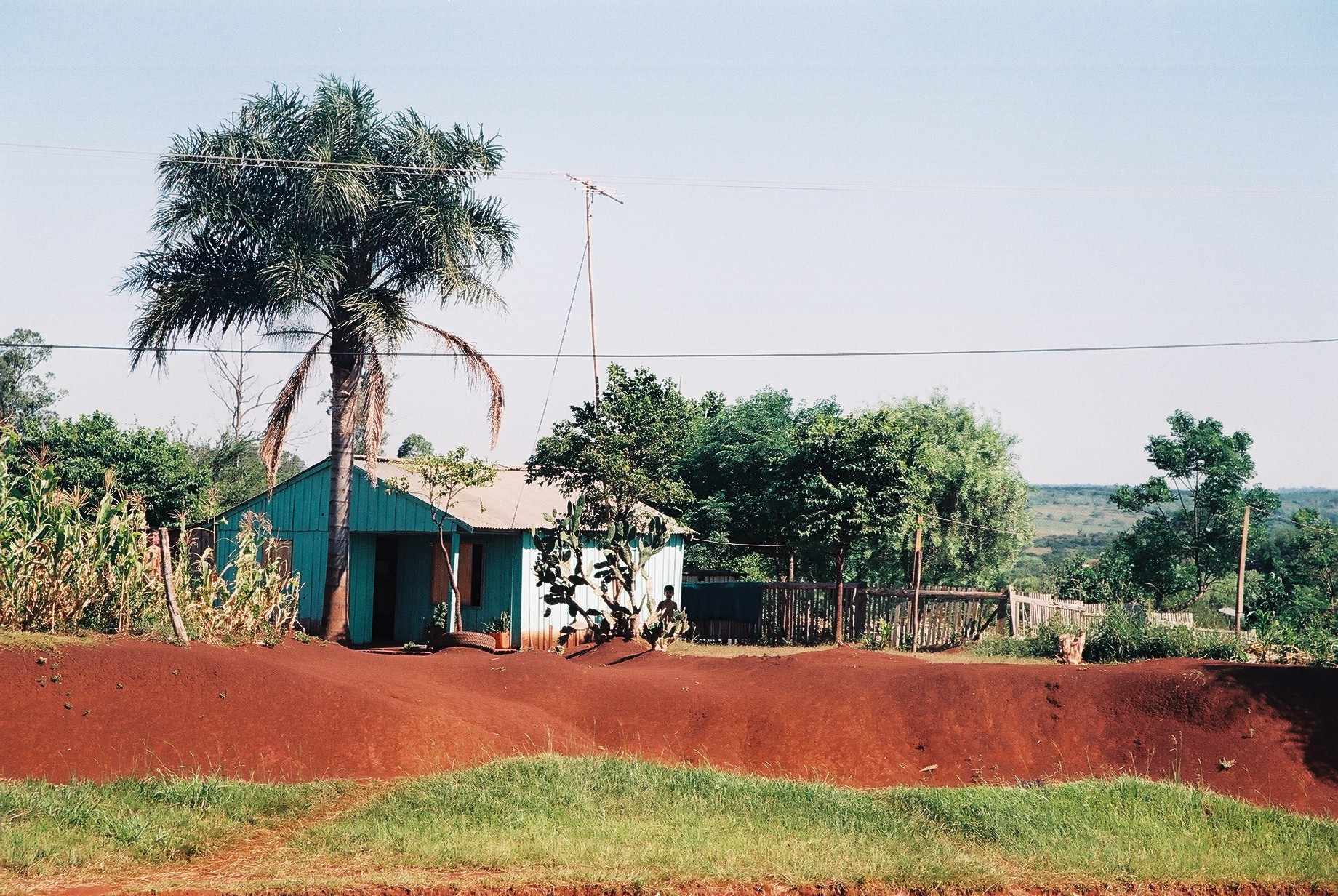 Red Earth, Misiones.JPG