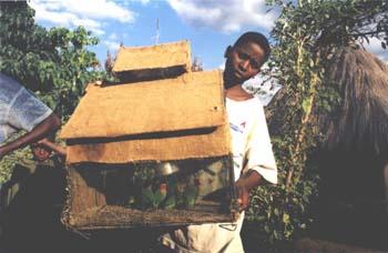A Zambian boy shows off his homemade birdcage. (JAMES FLINT)