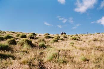 Gauchos on a hillside, Patagonia. (JAMES FLINT)