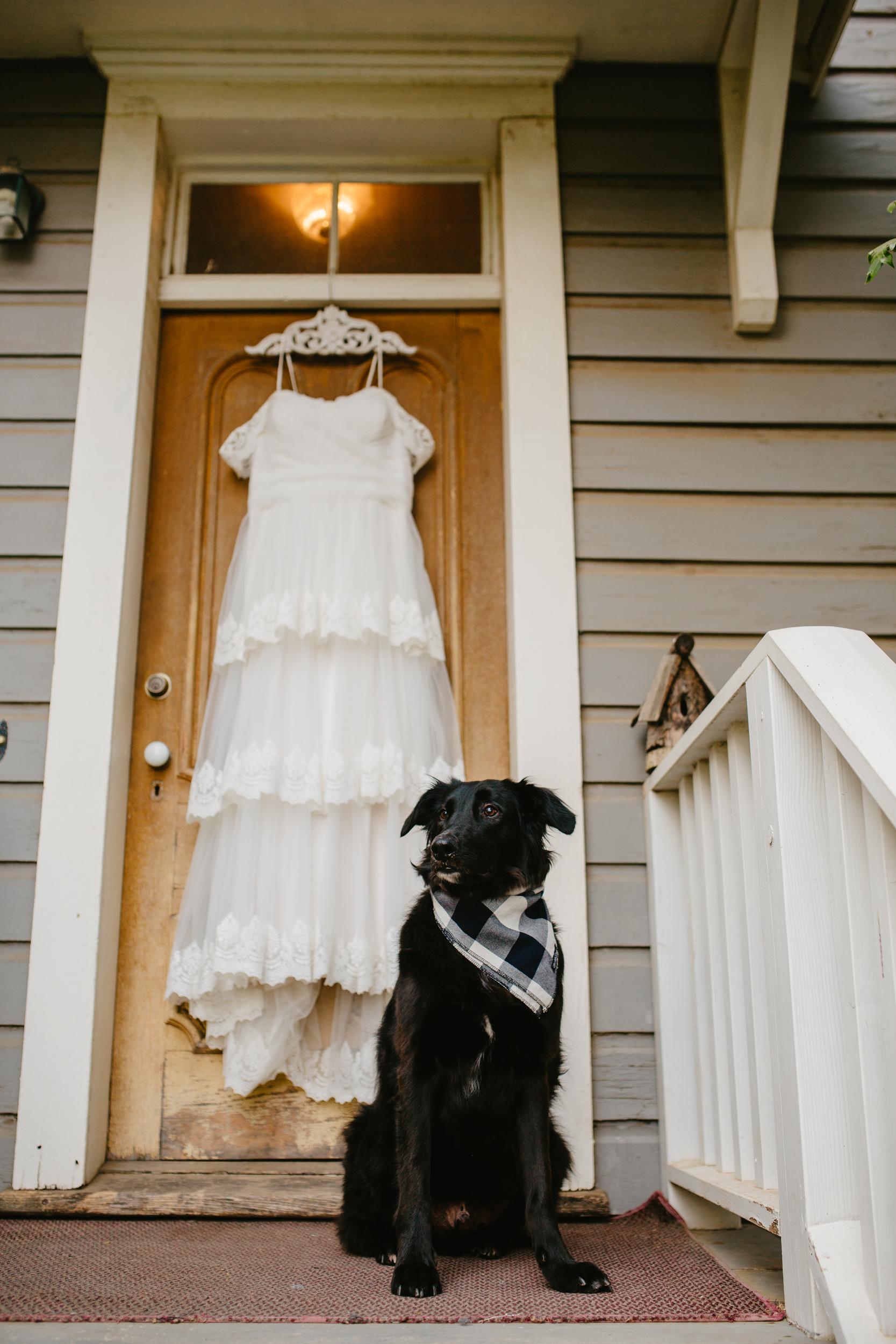 Chico Wedding Photographer-3.jpg