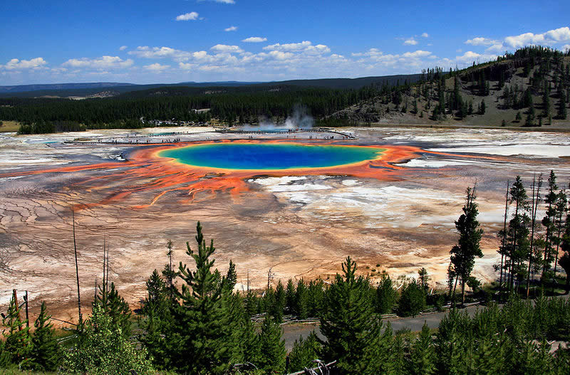 Yellowstone Park by   Tom Clark