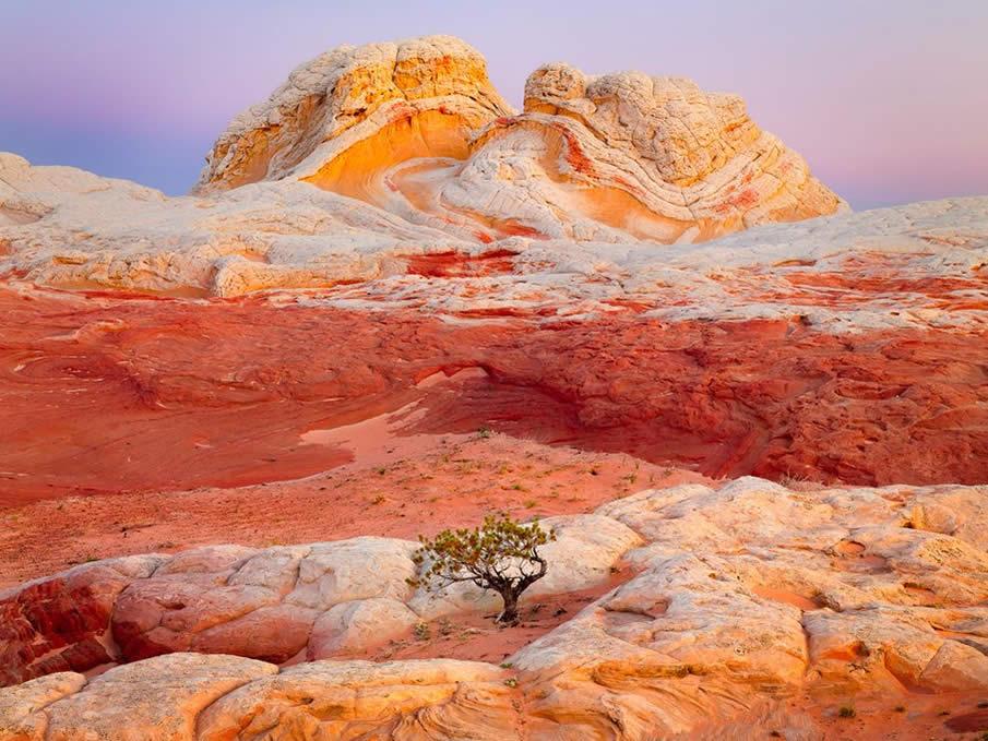 Arizona Butte by   Rex Naden
