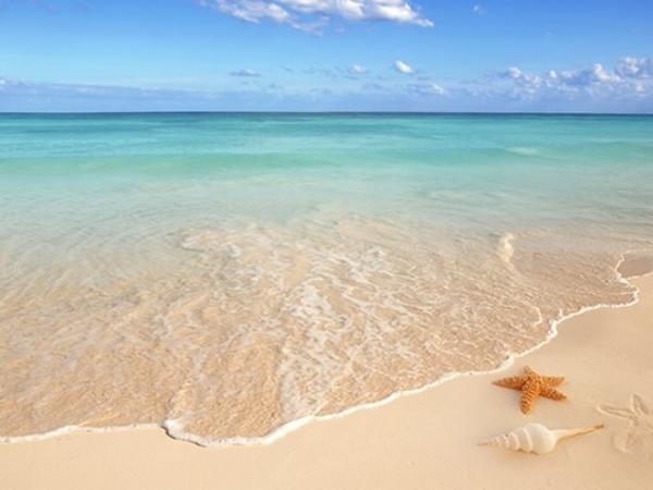 beach deco.jpg