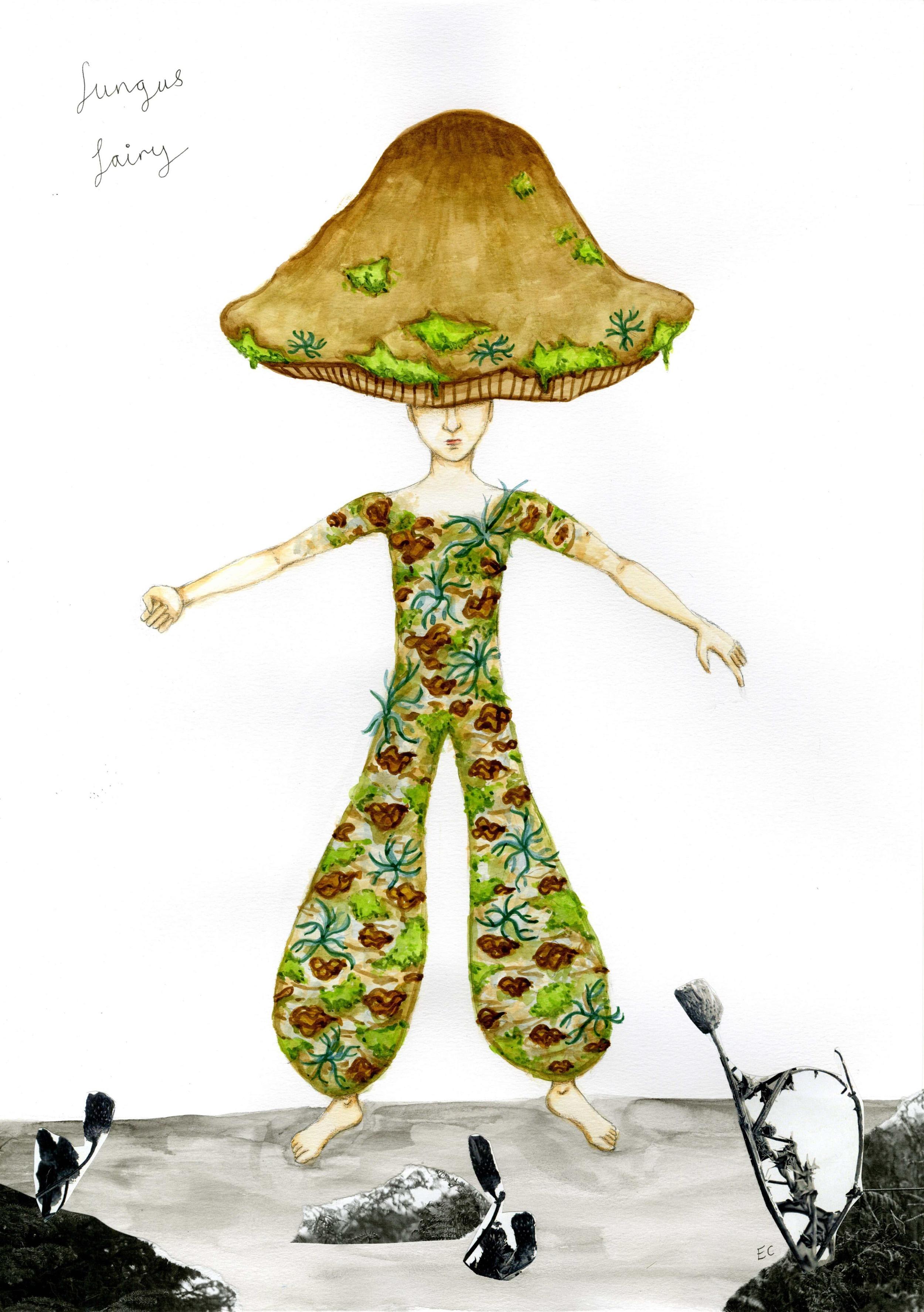 Fungus Fairy