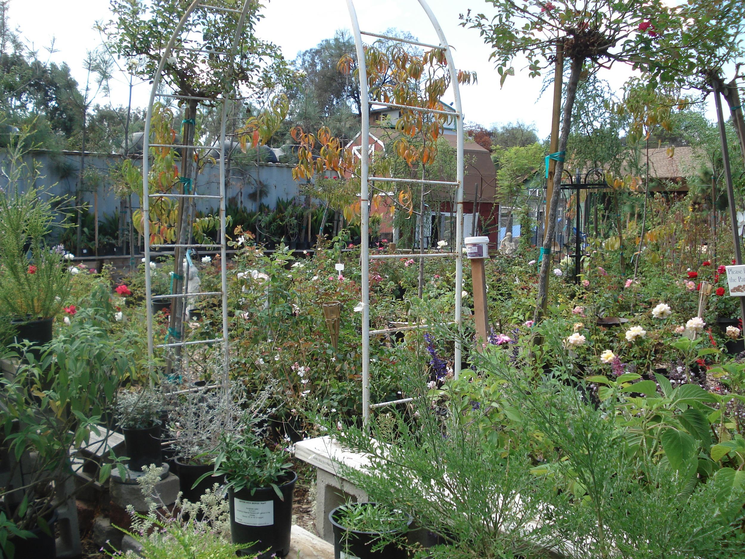 Gardening101_CityFarmers.png