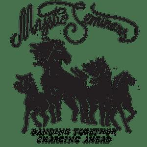 MYSTIC_BANDING_Logo.png