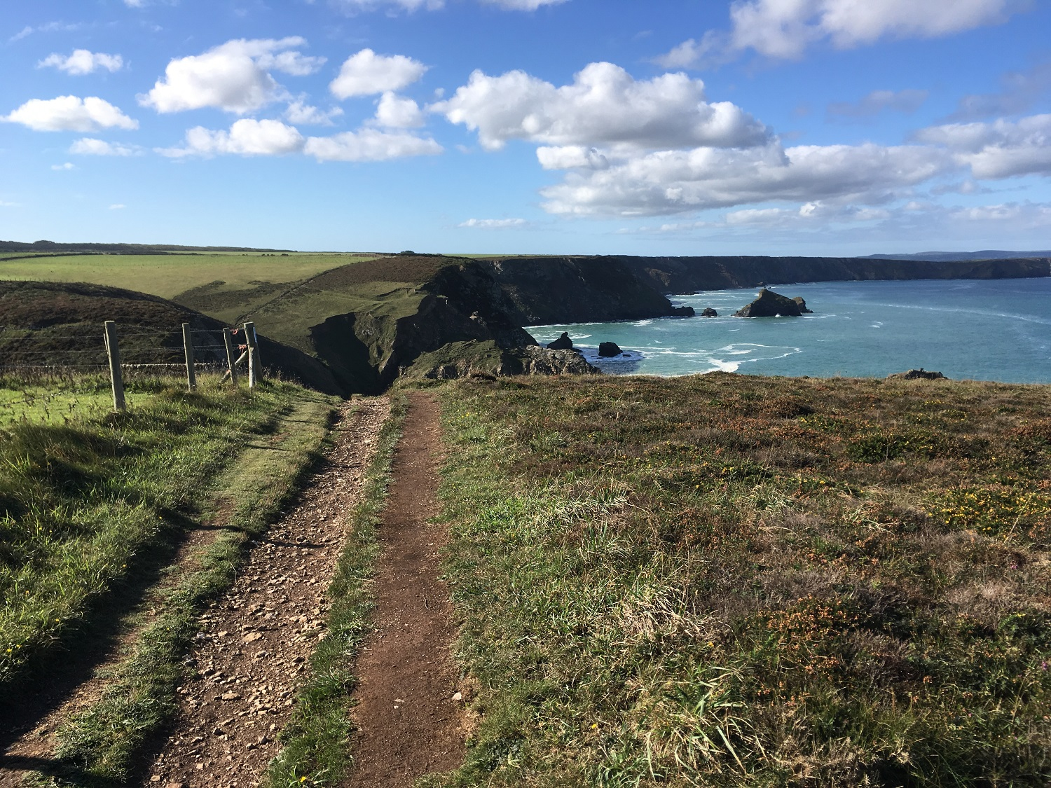 Portreath to Godrevy Head