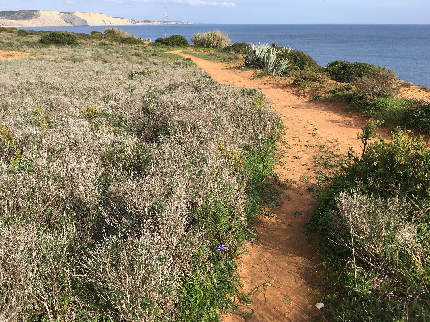 Algarve Walks, Great Circle Route