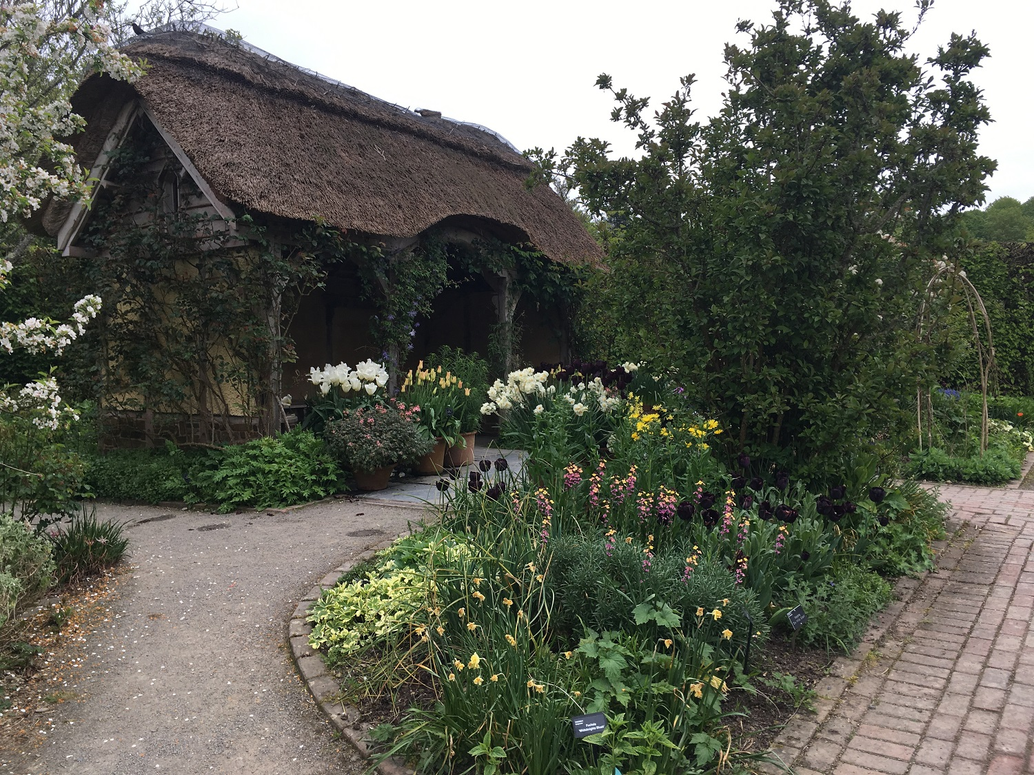 Great Circle Route, South West England Walks & Gardens, Rosemoor RHS Gardens
