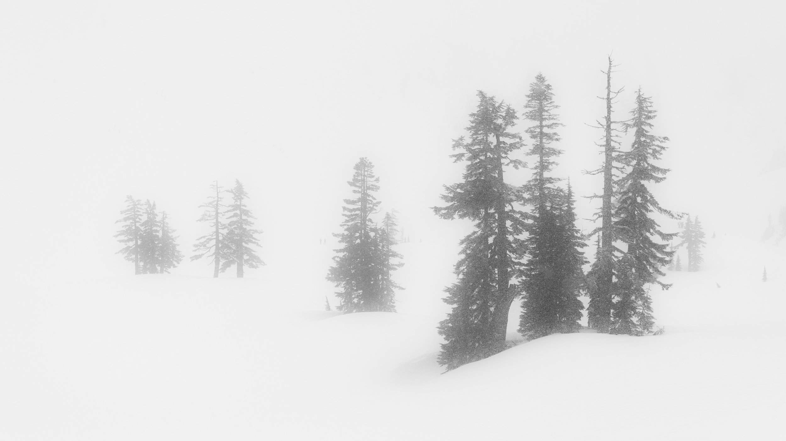 Whiteout conditions at the Mount Baker Ski Area reduce visibility to just a few dozen meters