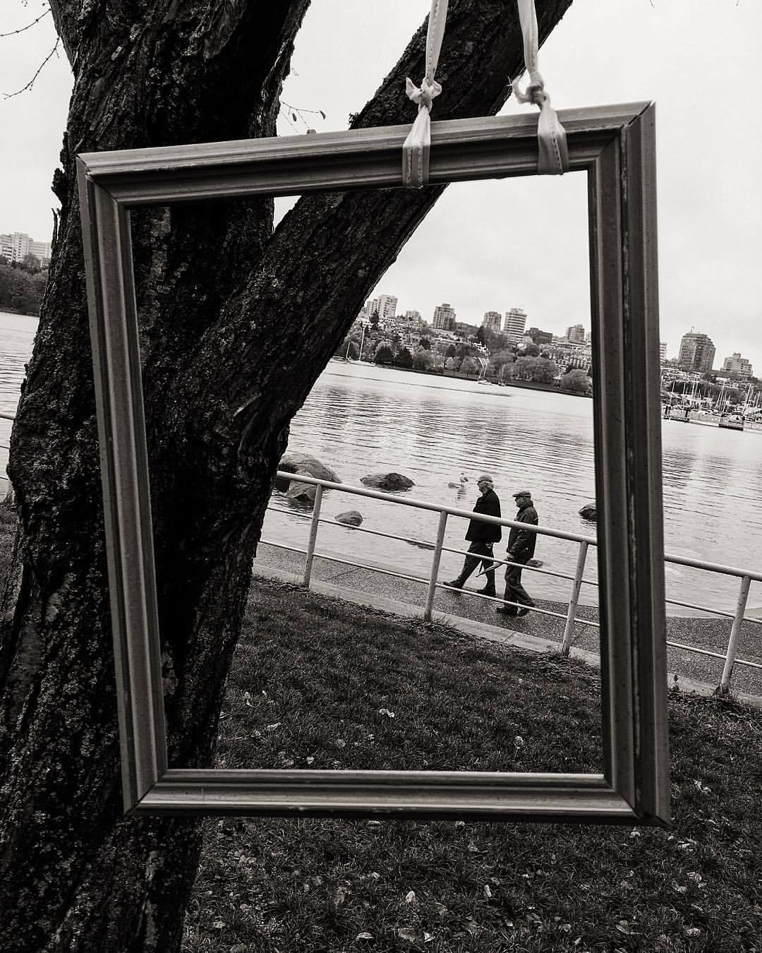 Frame within a frame. (at David Lam Park)