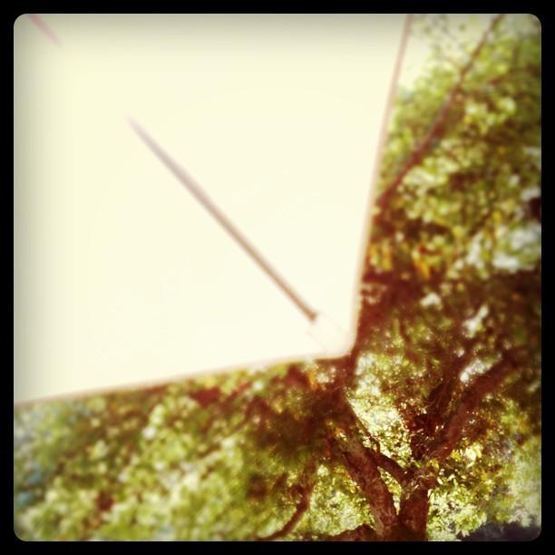 Sweet shade. (Taken with  instagram )
