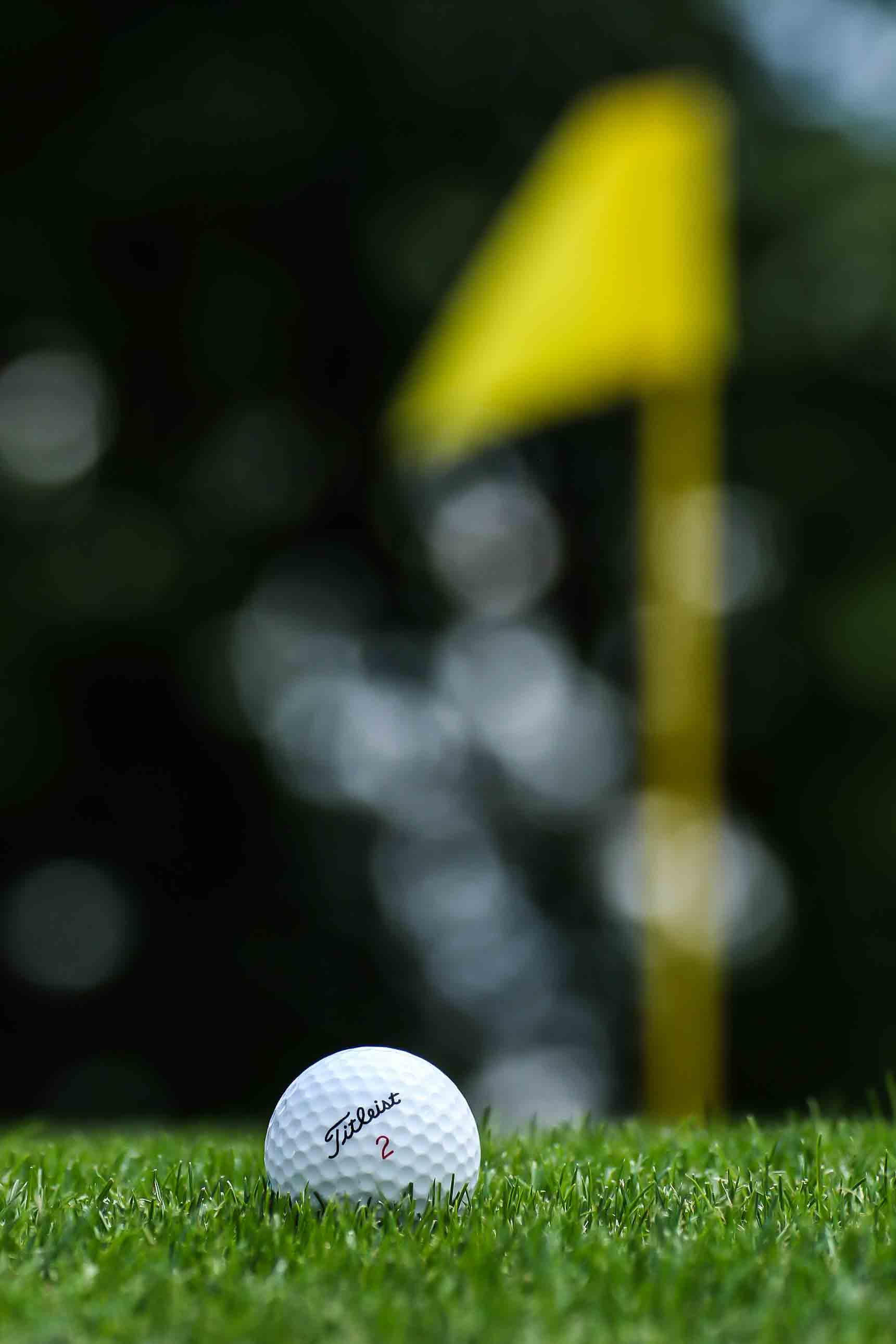 GolfBall2015-Small-1.jpg