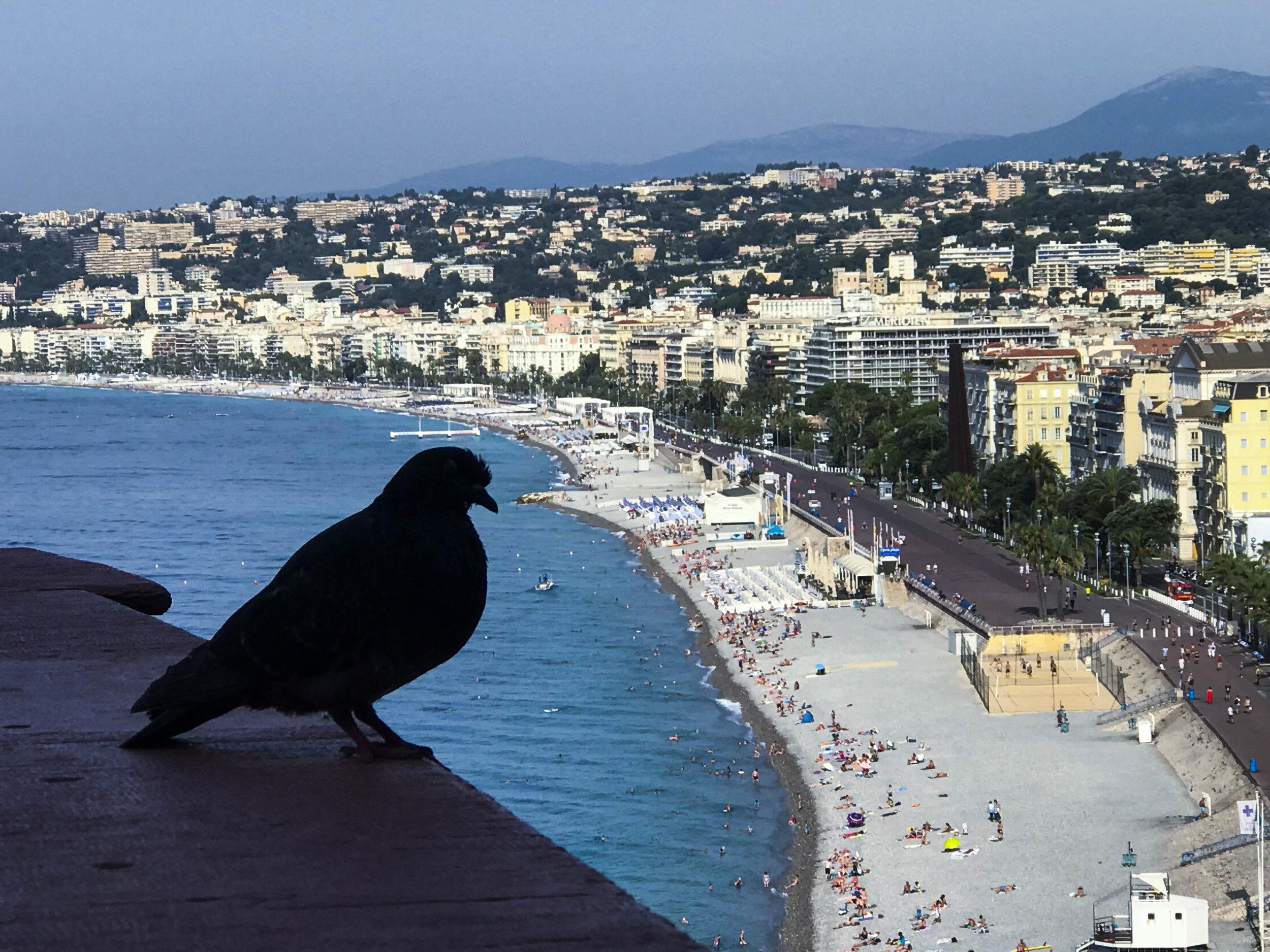 Birds Eye View - Nice, France