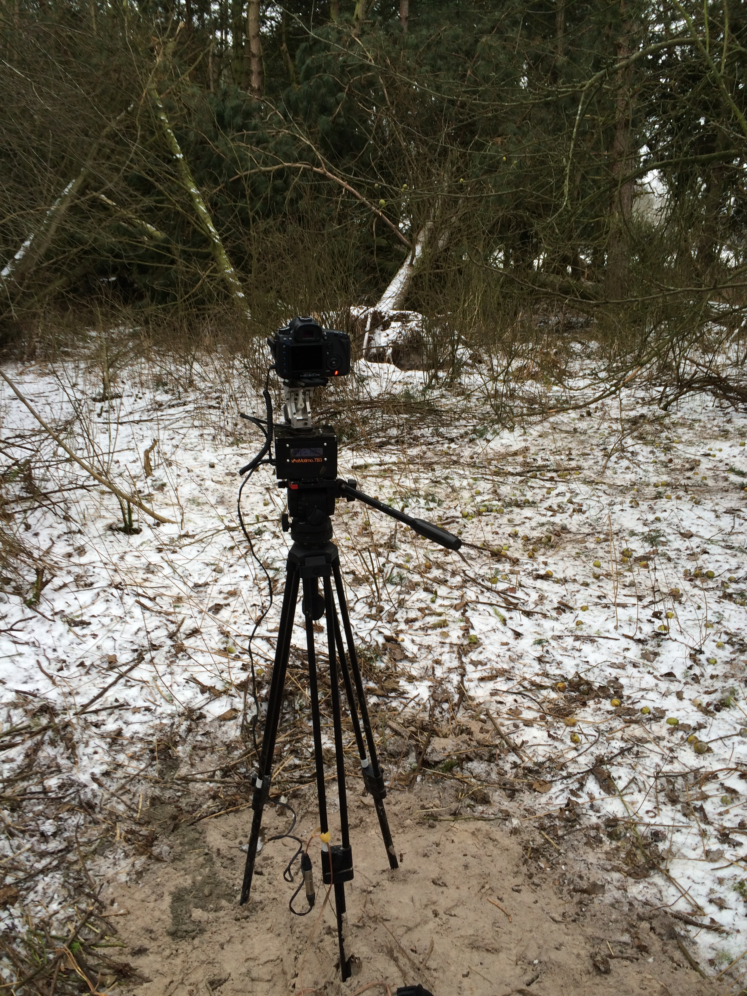 The 'buried' tripod.  A minute's silence was held shortly after in respect.