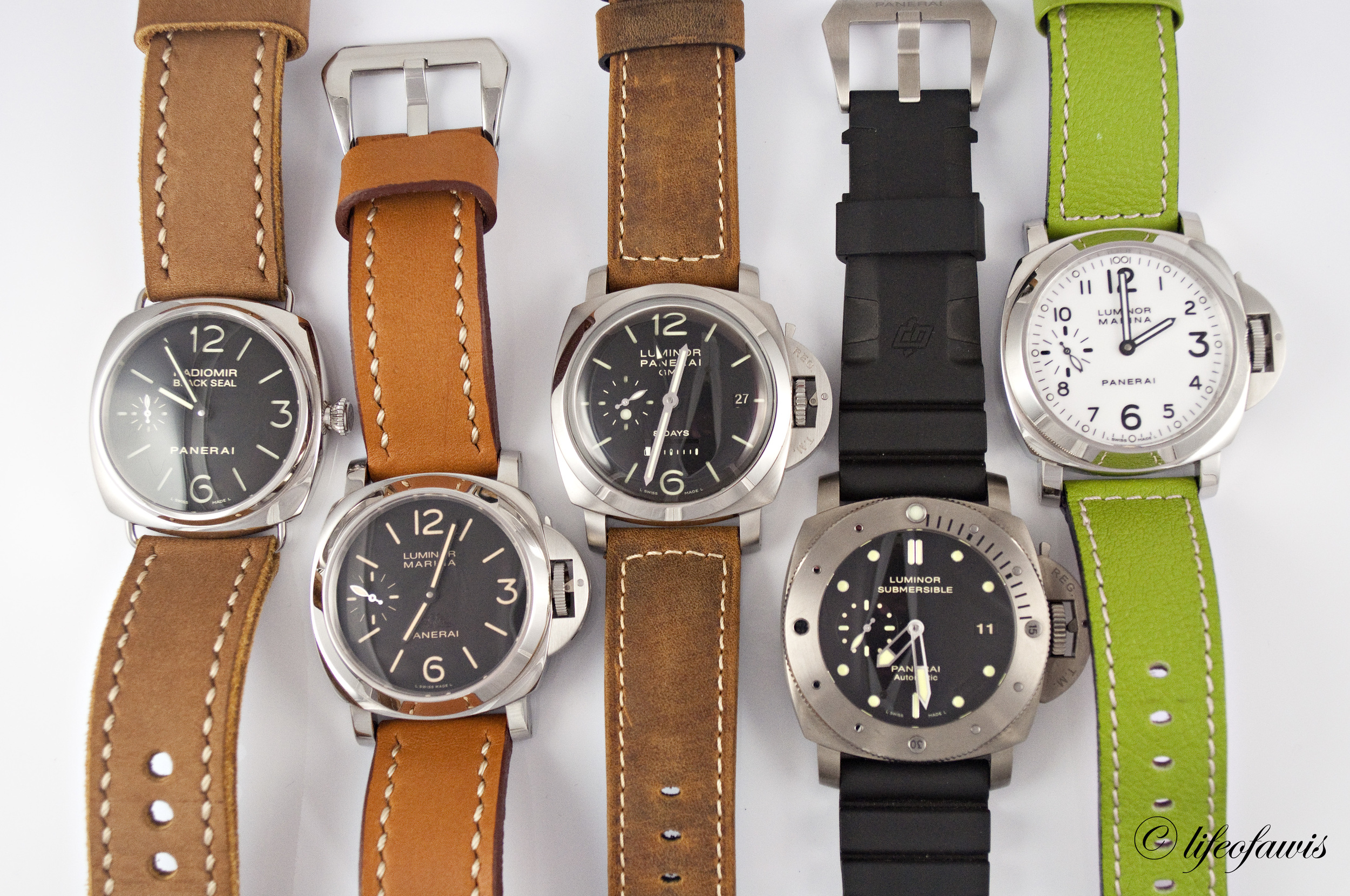 From left to right: PAM 183, PAM 416, PAM 233, PAM 305, and PAM 113.