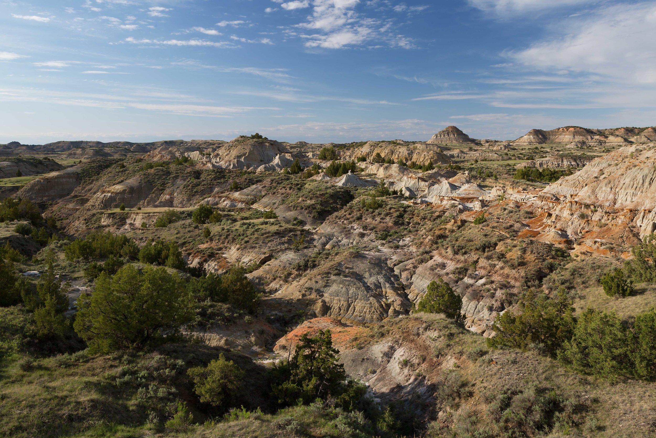 TRNP-landscape.jpg