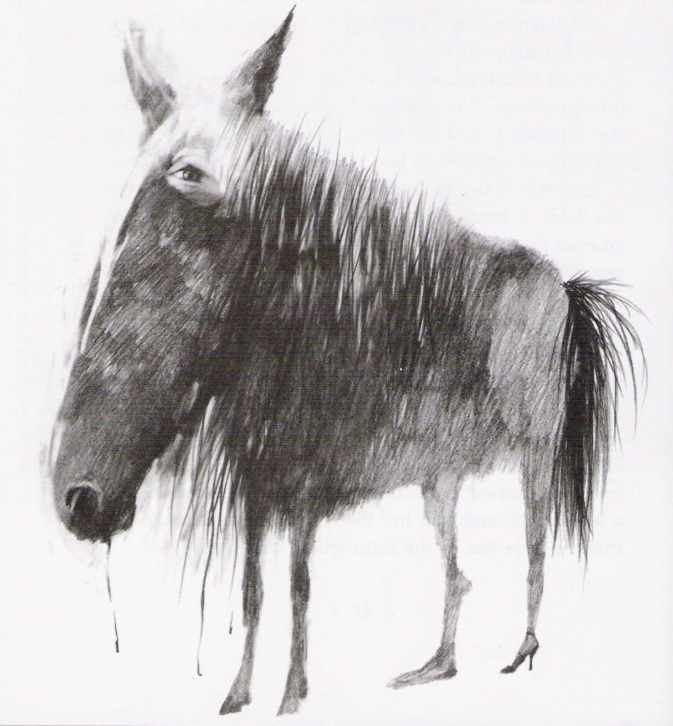 scary horse.jpg