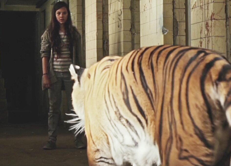 tigers post.jpg
