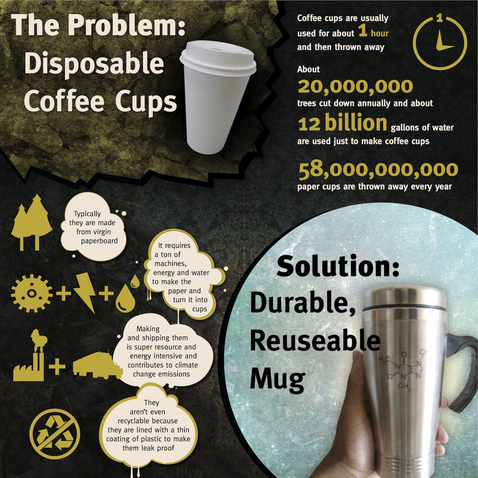 SUD Infographics_Cup_SM.jpg