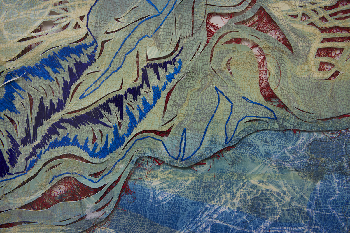 """waters II,detail, 18"""" x 24"""",  redeemed print, 2009"""