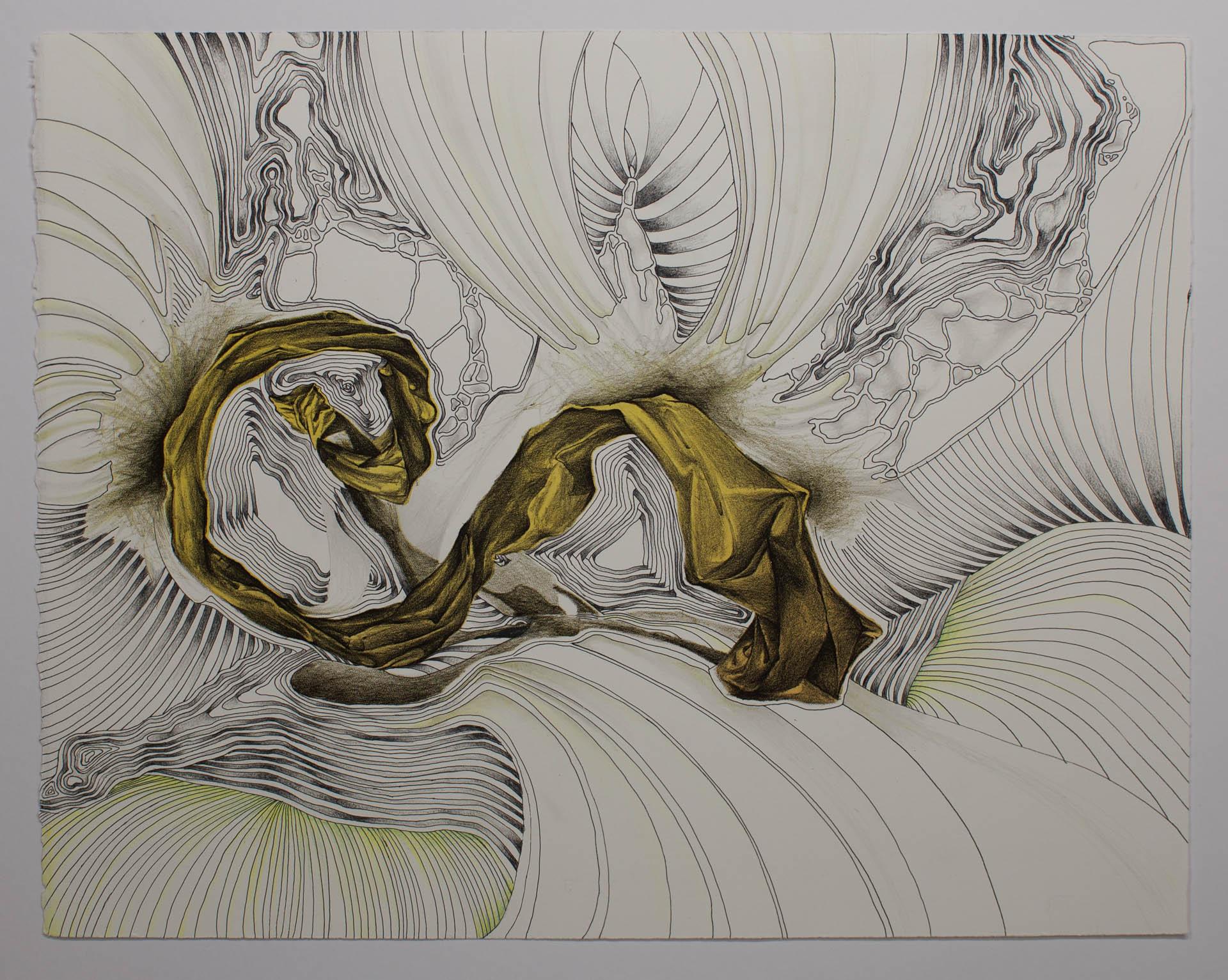 CatherineReinhart_lithograph_drawing_Iowa