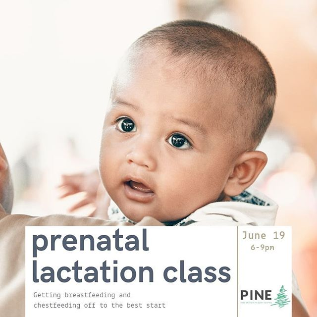 Planning to breastfeed or chestfeed a new little one in your life? Learn all about lactation in this 3 hour workshop designed for you! . . New class at @pine_health_yeg! .  Registration in profile. .  According to a 2013 study, over 98% of new families in Edmonton & Calgary initiate breastfeeding their newborns.  _  However, perceived milk supply issues & unexpected challenges mean that by 6 months, only 15% are exclusively breastfeeding.  _  __ Families DON'T need anyone to ❌promote❌ lactation , they need well-trained 💗support💗!__  _  This prenatal class is designed to get you off to the best start!  _ Packed with practical information about lactation, you'll learn about some of the wonders of the human body, find out what's fact or fiction with what you've heard, and connect with local supports.  _ Whether you want to nurse while sitting in a field of wildflowers,  pump through shifts at work  or focus on those precious first few days after birth,  our lactation counsellor will share key information with you so that you can achieve your personal goals.  _  This class is designed for the lactating parent(s), and their co-parents and partners. . Light refreshments provided. . . #yeg #yegfamilies #lactation #breastfeeding #chestfeeding #yegbabies #yegmoms #maternity #prenatalclass #pinehealth