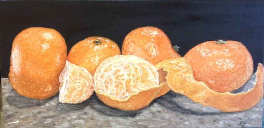 clementine still life. oil on canvas. 10x20.jpg